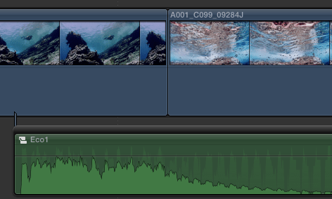 ecofcpx